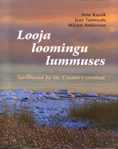 looja_loomingu
