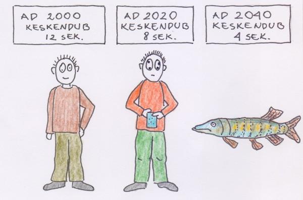 Merillelt40