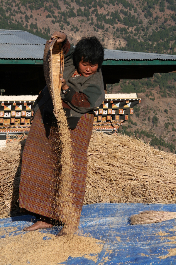 Riistuulaja Bhutan - A  Tuhkru
